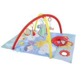 East Coast Baby Sensory Say Hello 4 in 1 Discovery World Gym